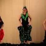 linea-_de-_baile_festivaldiciembre2013-138