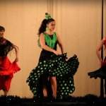 linea-_de-_baile_festivaldiciembre2013-140